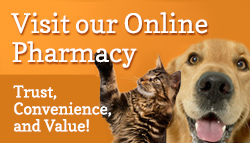 Urban Vet Online Pharmacy